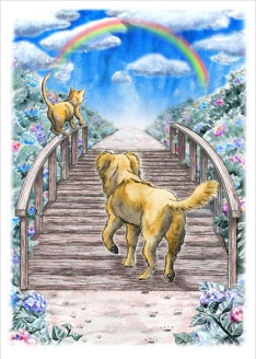 Rainbow Bridge, sympathy card design for Hunter Animal Rescue